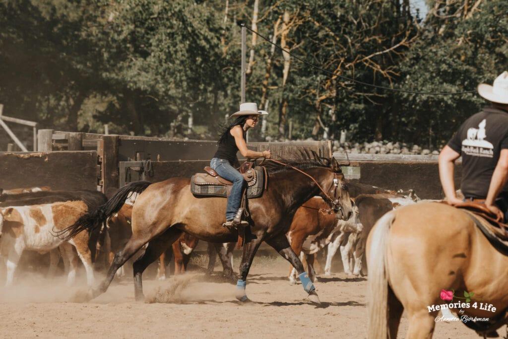 Maplerock Ranch 13