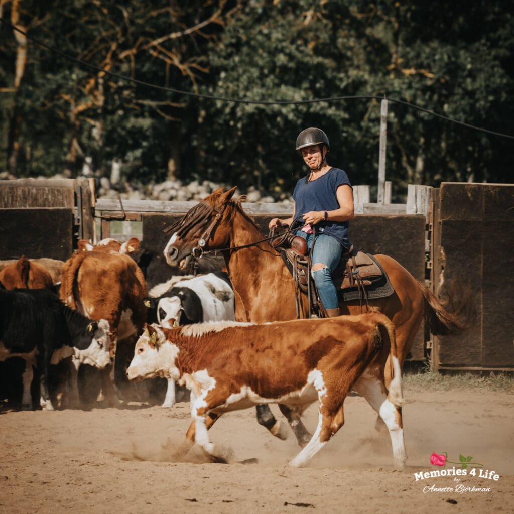 Maplerock Ranch 14