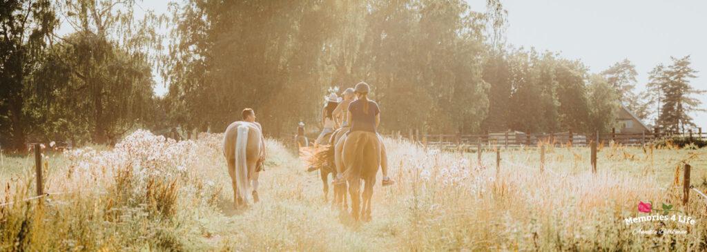 Maplerock Ranch 27