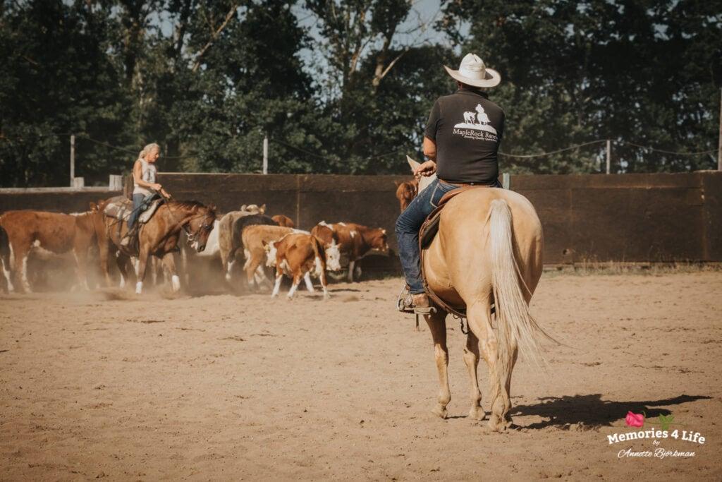 Maplerock Ranch 17