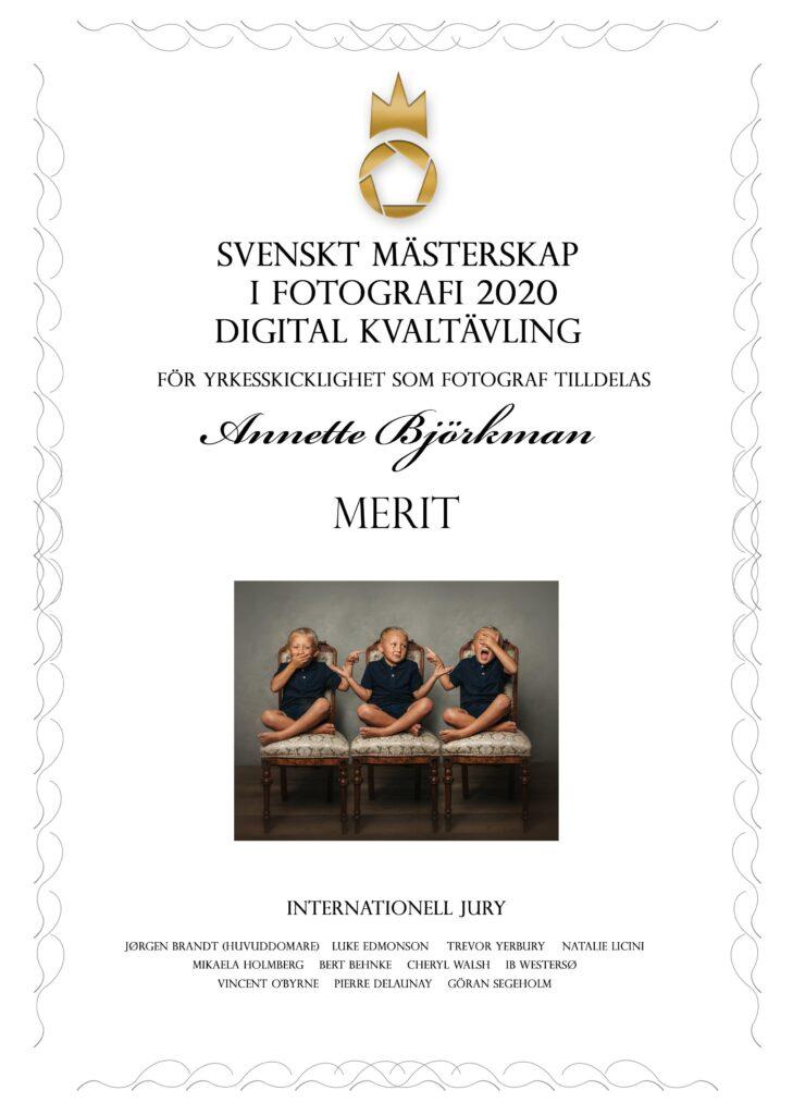 Diplom MERIT Digitalkvaltävling