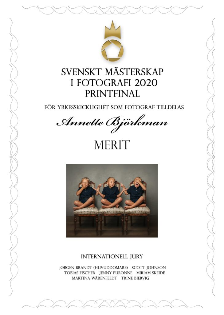 Diplom MERIT Printfinal