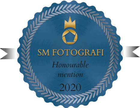 Emblem Honourable mention-SM2020