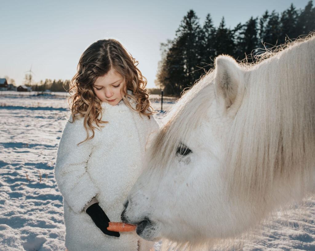 Flicka matar vit häst med morot i Vinterlandskap