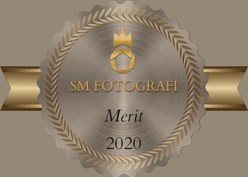 Merit emblem SM 2020