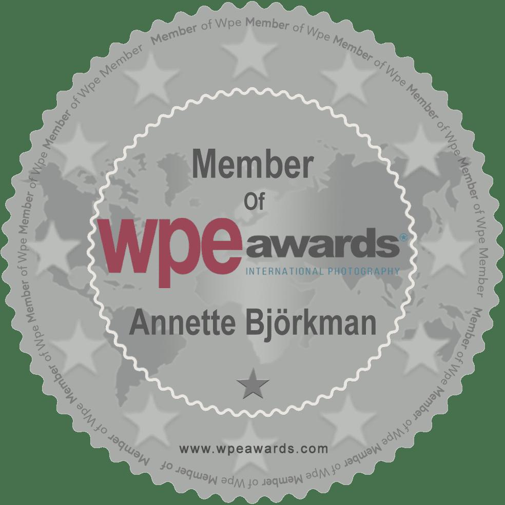 Award WPE-awards members